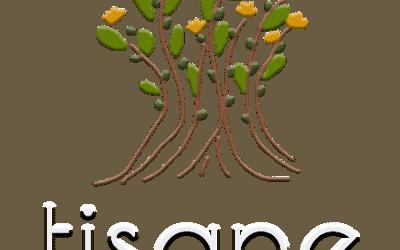 Tisane-antwerp